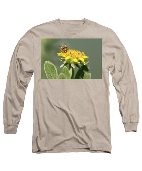 Yumm Pollen Long Sleeve T-Shirt by Christopher L Thomley