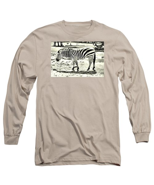 Zebra In Black And White Long Sleeve T-Shirt by James Potts