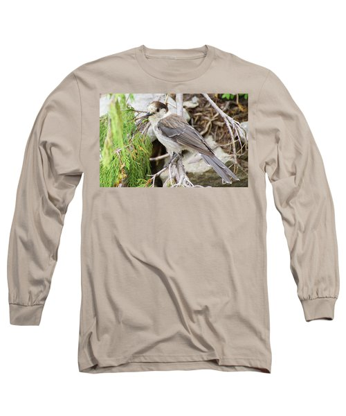 Camprobber - The Gray Jay Long Sleeve T-Shirt