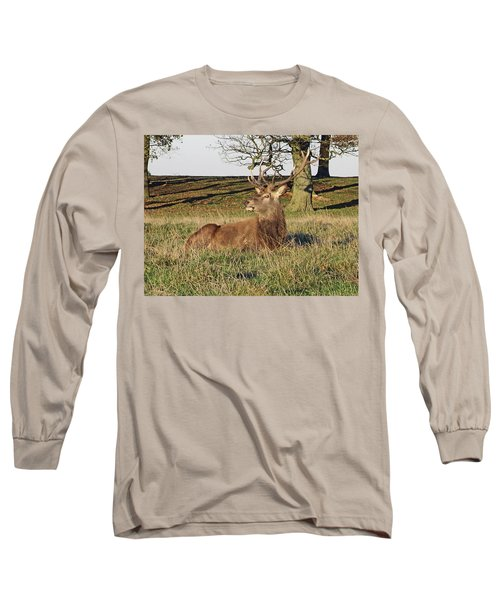 28/11/18  Tatton Park. Stag In The Park. Long Sleeve T-Shirt