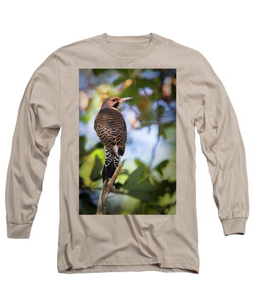 A Northern Flicker Long Sleeve T-Shirt