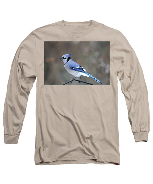 A Snowy Day With Blue Jay Long Sleeve T-Shirt
