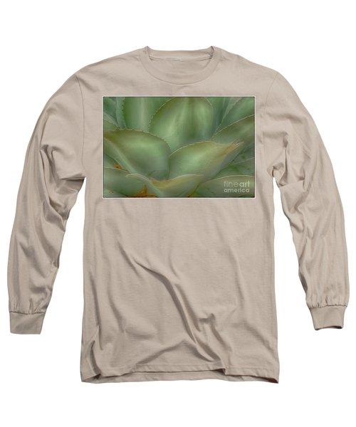 Agave Softened Long Sleeve T-Shirt