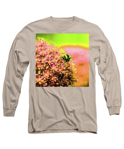 Allium With Bee 1 Long Sleeve T-Shirt