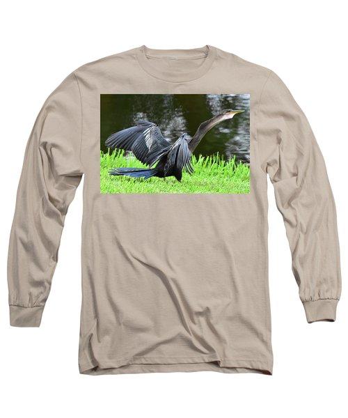 Anhinga Surprise Long Sleeve T-Shirt