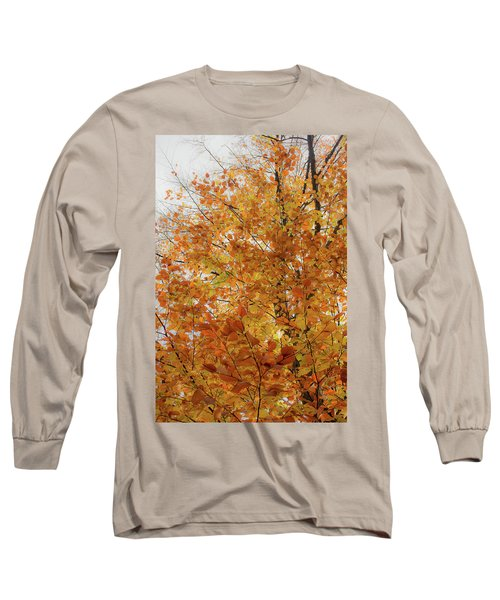Autumn Explosion 1 Long Sleeve T-Shirt