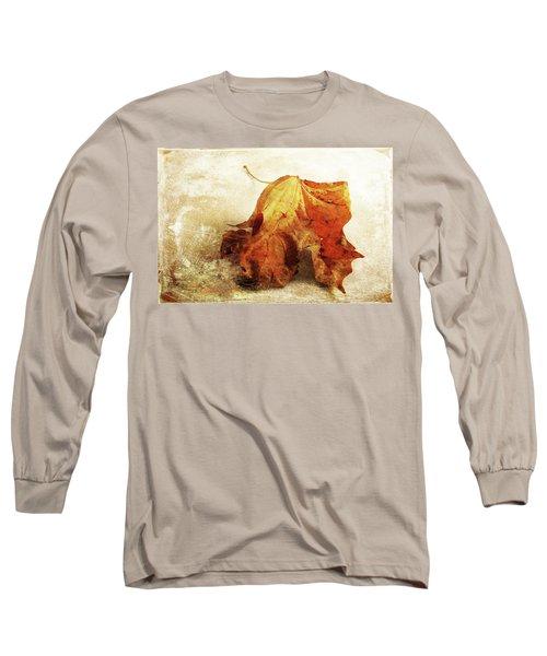 Long Sleeve T-Shirt featuring the photograph Autumn Texture by Randi Grace Nilsberg