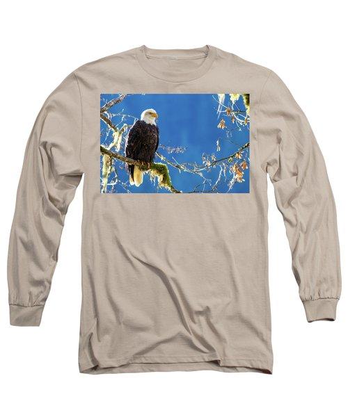 Backlit Bald Eagle In Squamish Long Sleeve T-Shirt