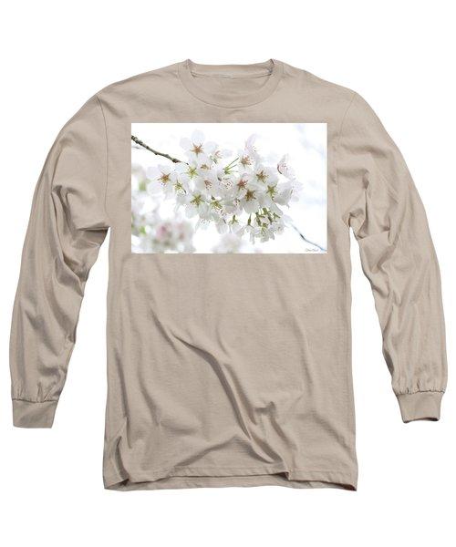 Beautiful White Cherry Blossoms Long Sleeve T-Shirt