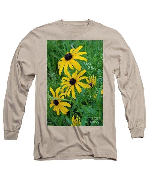 Black Eyed Susans 1 Long Sleeve T-Shirt