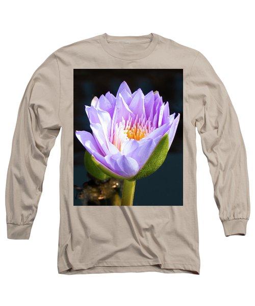 Brillance In Purple Long Sleeve T-Shirt