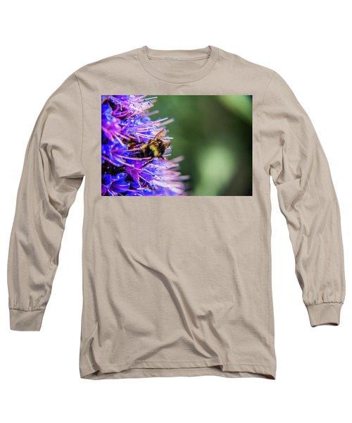 Busy Bee 2 Long Sleeve T-Shirt