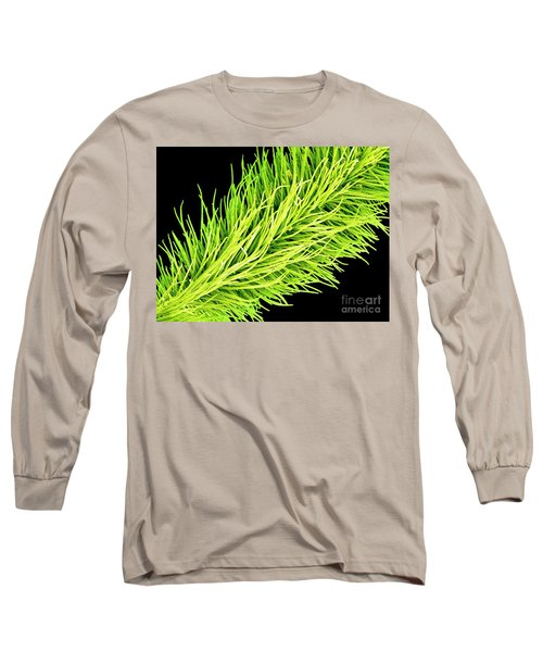 C016/0065 Long Sleeve T-Shirt
