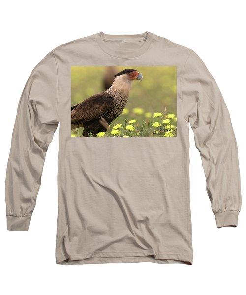 Caracara In Wildflowers Long Sleeve T-Shirt