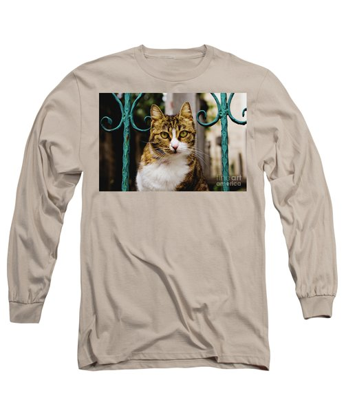 Cat On A Fence Long Sleeve T-Shirt