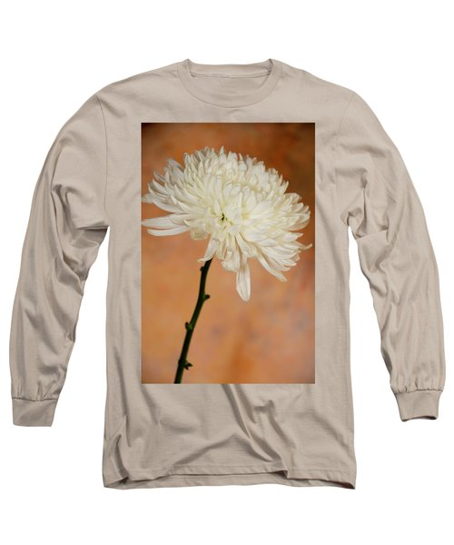 Chrysanthemum On Canvas Long Sleeve T-Shirt