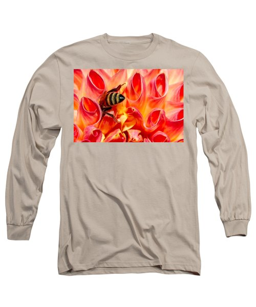 Deep Dive Long Sleeve T-Shirt