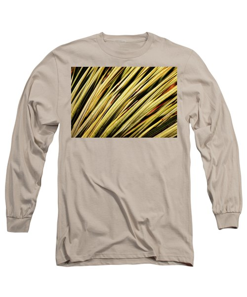 Long Sleeve T-Shirt featuring the photograph Desert Grasses IIi by Leda Robertson