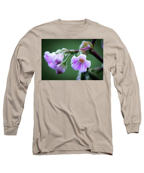 Dewy Dogbane #1 Long Sleeve T-Shirt
