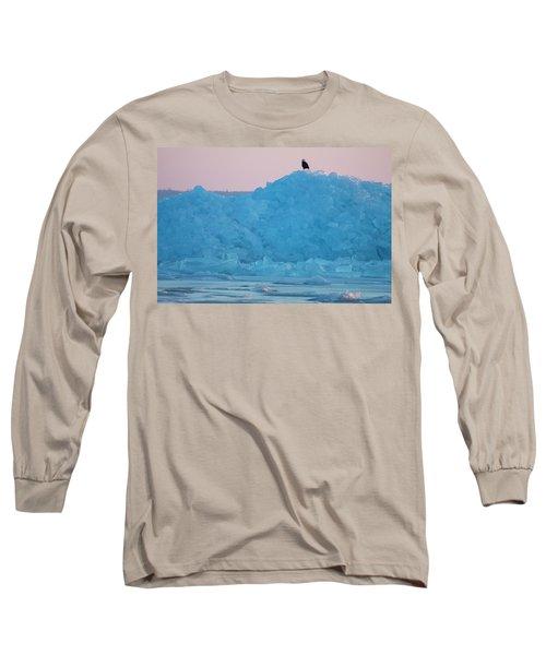 Eagle On Ice Mackinaw City 2261803 Long Sleeve T-Shirt