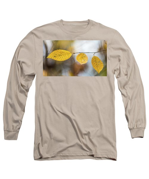 Long Sleeve T-Shirt featuring the photograph Fall In Triplicate by Michael Arend