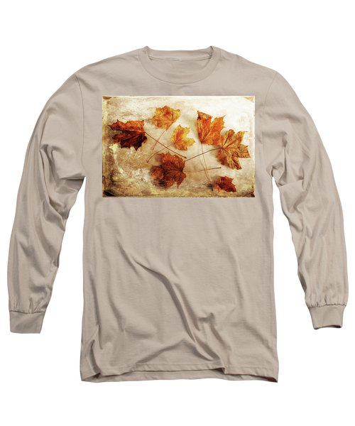 Long Sleeve T-Shirt featuring the photograph Fall Keepers by Randi Grace Nilsberg