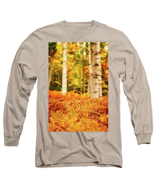 Golden Ferns In The Birch Glade Long Sleeve T-Shirt