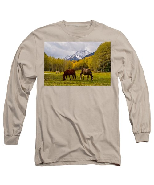 Long Sleeve T-Shirt featuring the photograph Grazing In Aspen by Jacqueline Faust