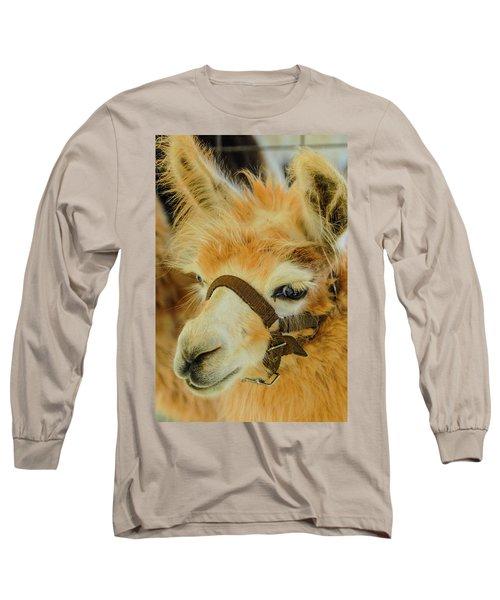 Happy Alpaca Long Sleeve T-Shirt