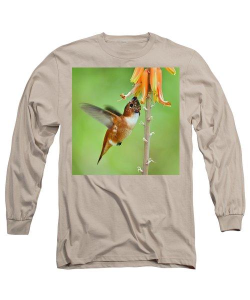 Hungry Hummer Long Sleeve T-Shirt