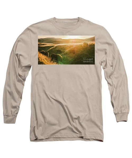 Icelandic Landscapes, Sunset In A Meadow With Horses Grazing  Ba Long Sleeve T-Shirt