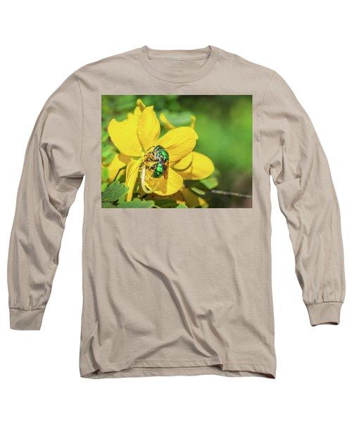 Orchard Bee Long Sleeve T-Shirt