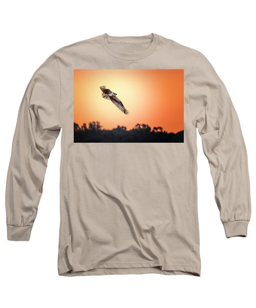 Osprey At Sunrise Long Sleeve T-Shirt