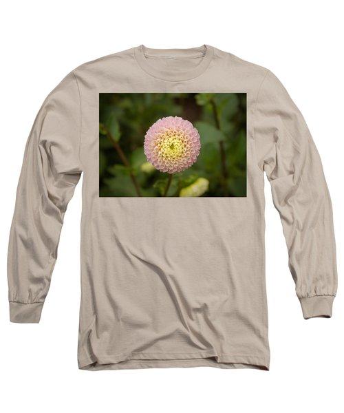 Petite Pink Long Sleeve T-Shirt