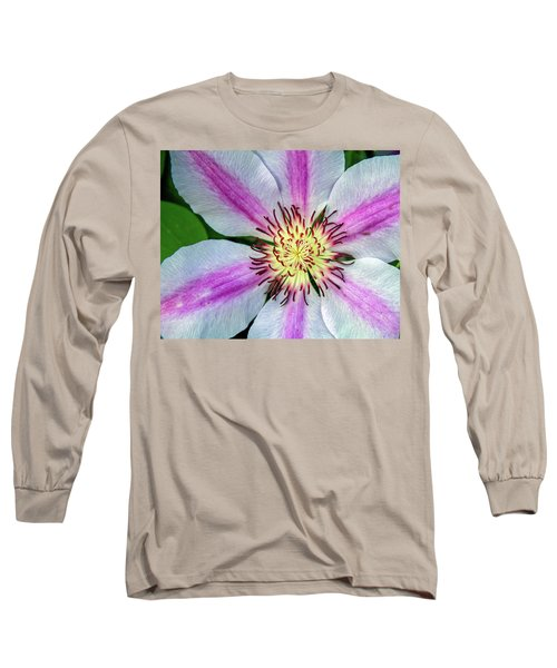 Pink Striped Clematis Close Up Long Sleeve T-Shirt