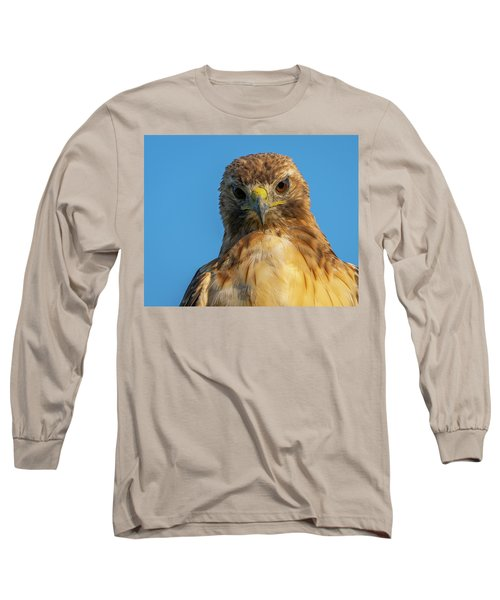 Red Tail Hawk Long Sleeve T-Shirt