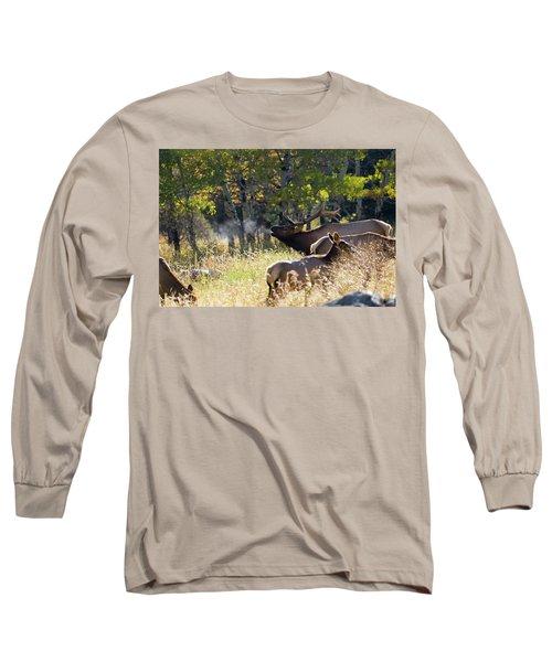Rocky Mountain Bull Elk Bugeling Long Sleeve T-Shirt