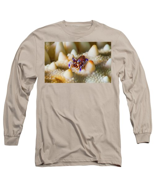 Tiny Big World Long Sleeve T-Shirt