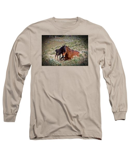 Wild Black New Born Foal And Mare Long Sleeve T-Shirt