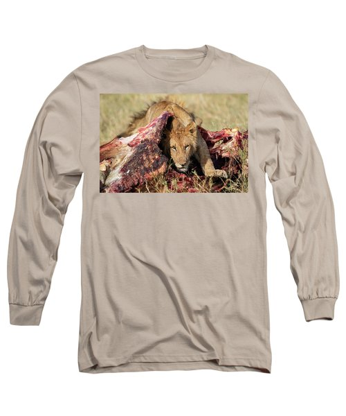 Young Lion On Cape Buffalo Kill Long Sleeve T-Shirt