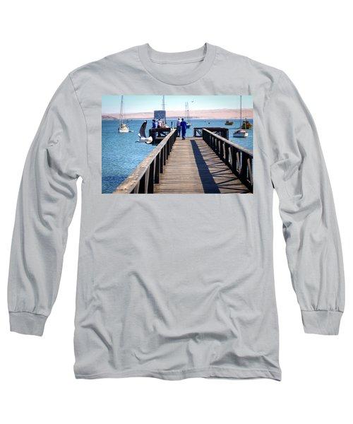 Seagull In Flight Long Sleeve T-Shirt