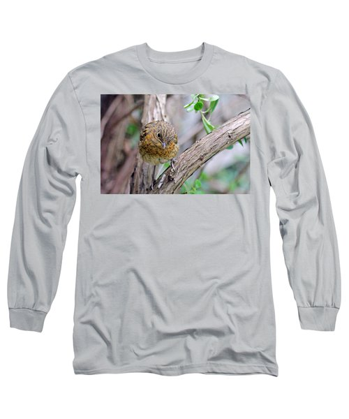Baby Robin Long Sleeve T-Shirt