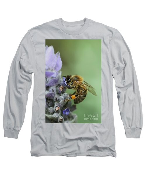 Long Sleeve T-Shirt featuring the photograph Happy Bee by Joy Watson