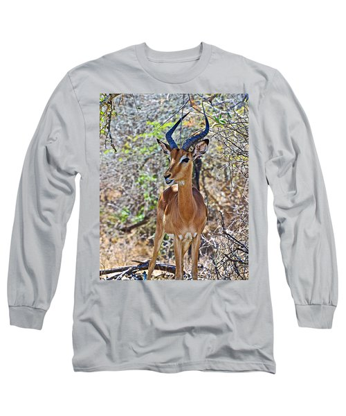 Male Impala In Kruger National Park-south Africa   Long Sleeve T-Shirt