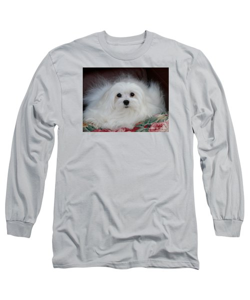 Snowdrop The Maltese Long Sleeve T-Shirt
