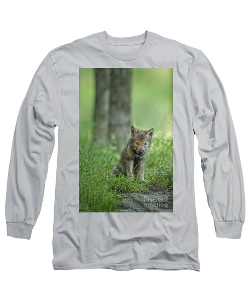 Timber Wolf Pup Long Sleeve T-Shirt