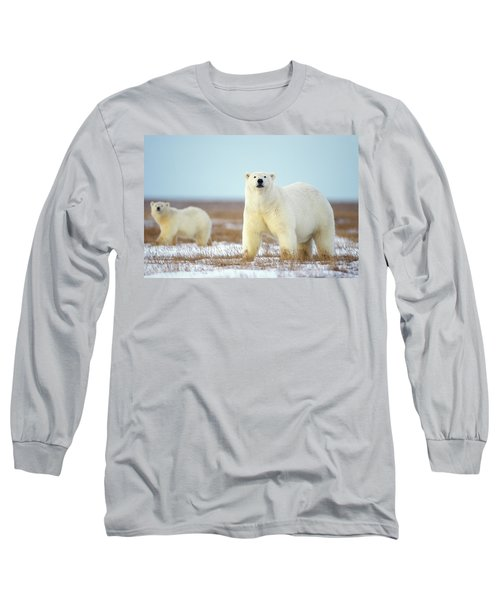 Female Polar Bear With Spring Cub Long Sleeve T-Shirt