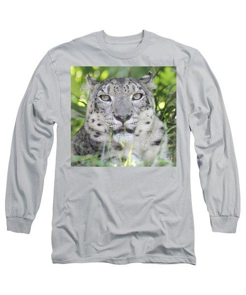 Snow Leopard Long Sleeve T-Shirt by John Telfer