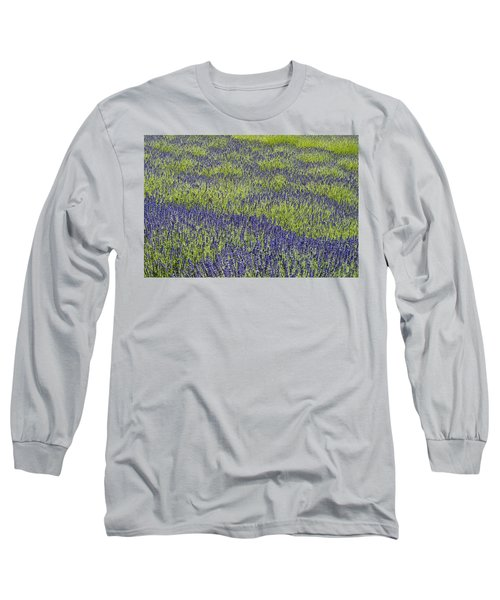 Lavendar Field Rows Of White And Purple Flowers Long Sleeve T-Shirt