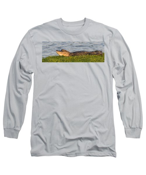 Alligator Smile Long Sleeve T-Shirt by Ed Gleichman